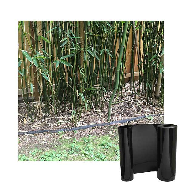 How to contain bamboo in front of a fence